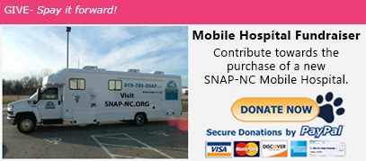 Mobile Hospital Fundraiser