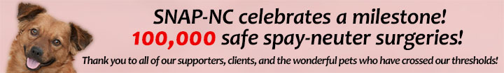 SNAP-NC Celebrates a milestone! 100,000 safe spay-neuter surgeries! Thank you!